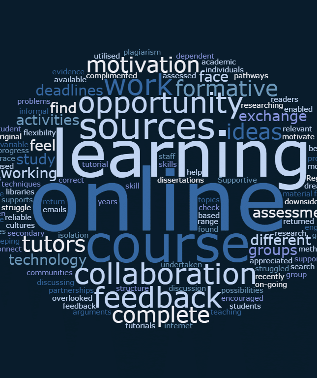 OLsuccess-wordcloud
